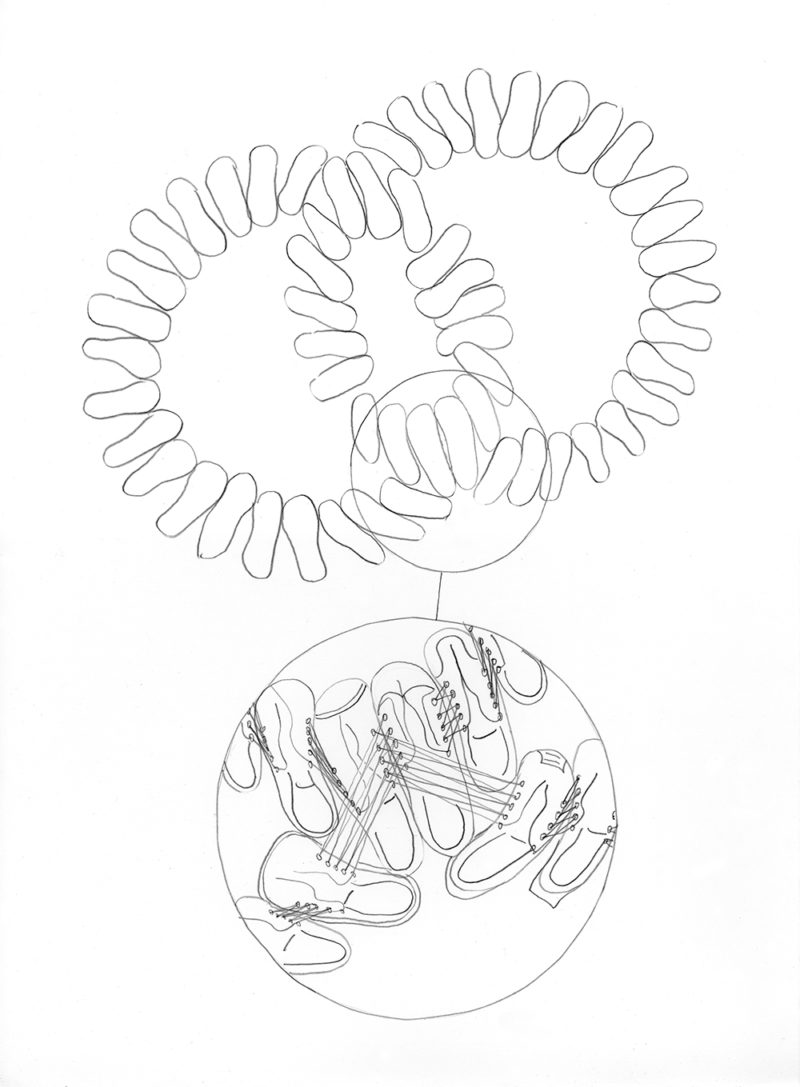 Shoe Sculpture Drawing: Universal Set, 2008 (sketch)